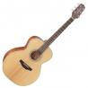 Takamine G20 面單板Nex桶木吉他 GN20-NS |全台獨家