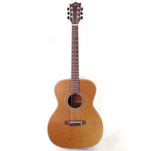 Seed 碳化木全單板木吉他 S1000-TS